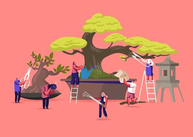 Conceito de cultivo de bonsai