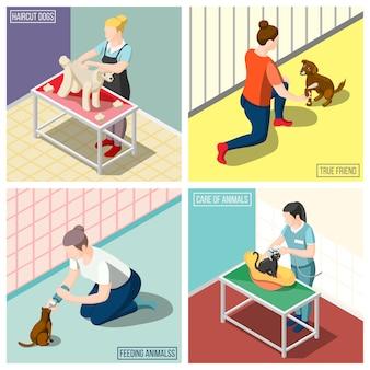 Conceito de design isométrico de voluntários de animais