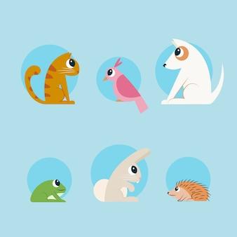 Conceito de diferentes animais de estimação