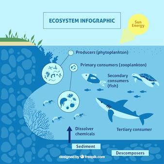Conceito de ecossistema infográfico com peixe