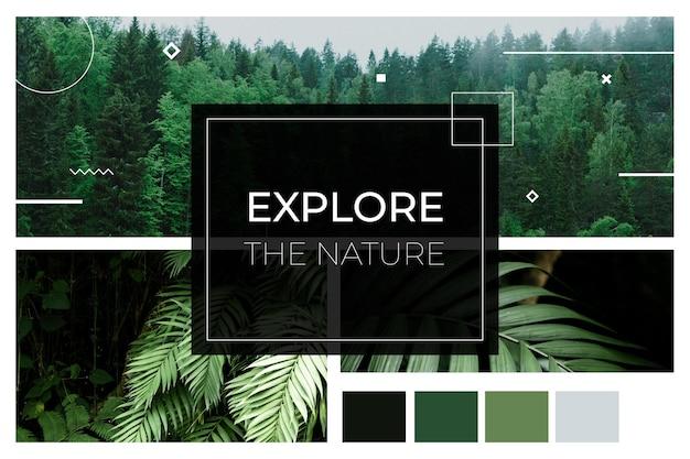 Conceito de exploração de natureza de colagem de fotos
