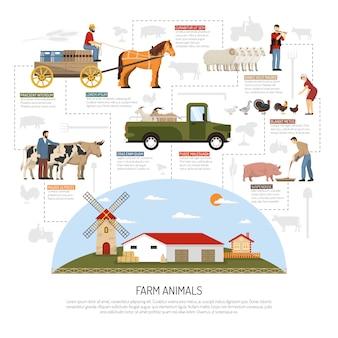 Conceito de fluxograma de animais de fazenda