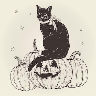Conceito de gato de halloween