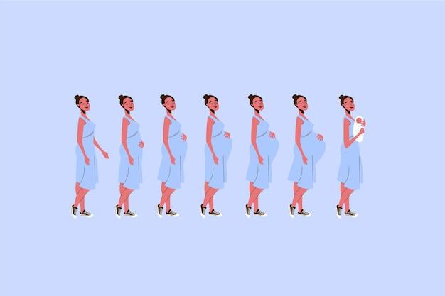 Conceito de ilustração de fases de gravidez