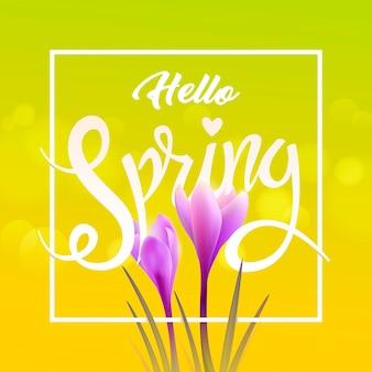 Conceito de ilustração. olá primavera. açafrões