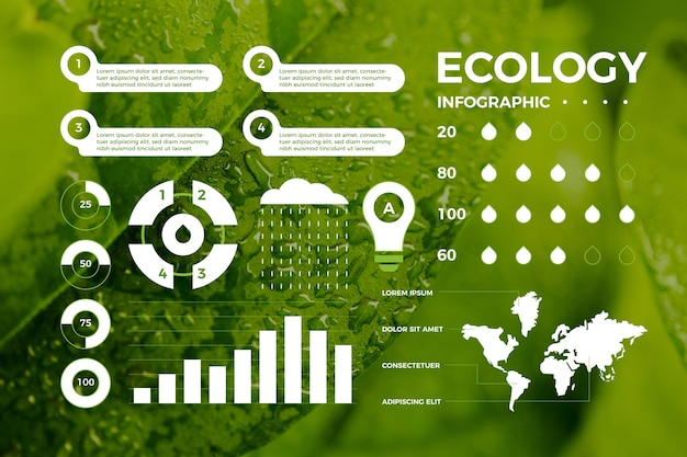 Conceito de infográfico de ecologia