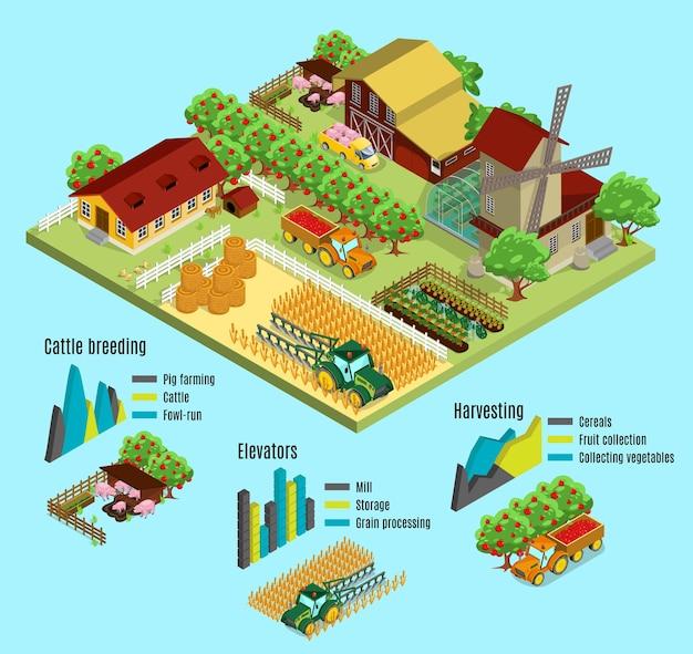 Conceito de infográfico de fazenda isométrica