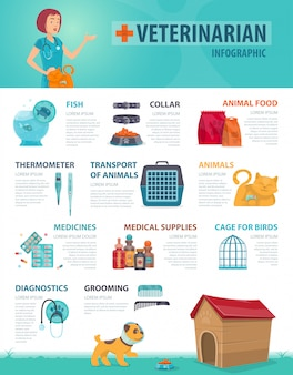 Conceito de infográfico veterinário colorido