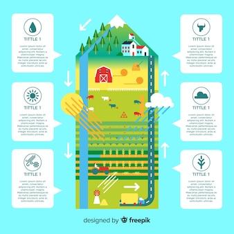 Conceito de infográficos ecossistema e natureza