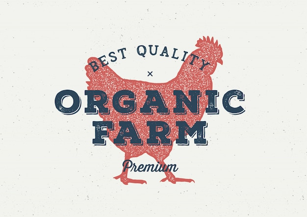 Conceito de logotipo vintage de frango fazenda