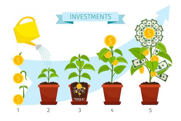 Conceito de processo de investimentos com crescimento de árvore de dinheiro