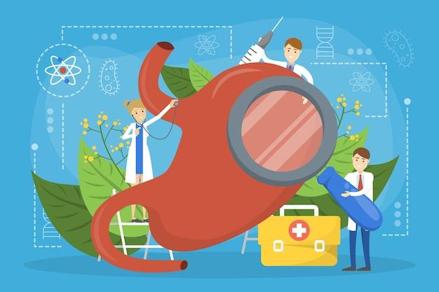 Conceito de tratamento do estômago. médico em pé de órgão