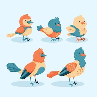 Conceito desenhado à mão de coleção de pássaros