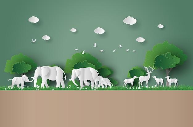 Conceito eco e o dia mundial da vida selvagem