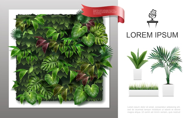 Conceito realista de plantas caseiras com plantas caseiras em vasos e uma bela parede verde com folhas tropicais