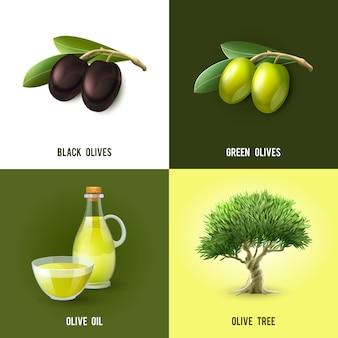 Conceito verde-oliva