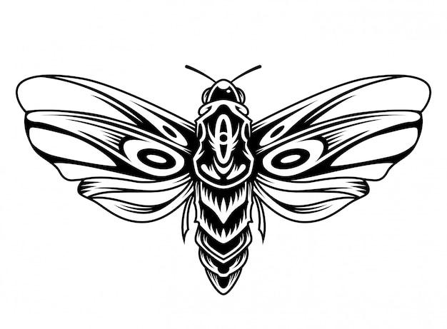 Conceito vintage linda borboleta