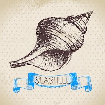 Conchas do mar mão esboço desenhado. ilustração vintage