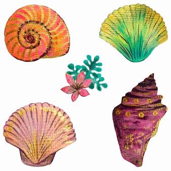 Conchas douradas e flores com corais. ilustração em aquarela. elementos isolados do vetor.
