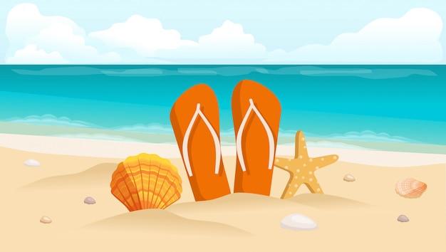 , conchas e composição de calçados
