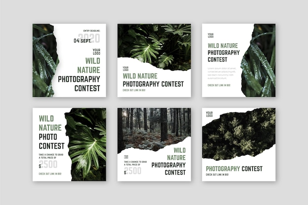Concurso de fotografia de natureza selvagem instagram post
