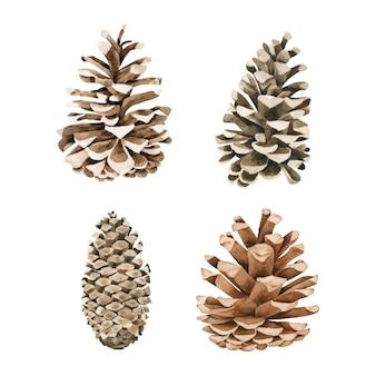 Cone de pinhas coleção aquarela sobre fundo branco