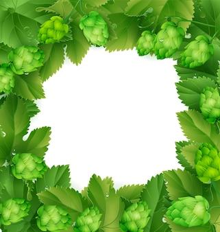 Cones de lúpulo e folhas verdes
