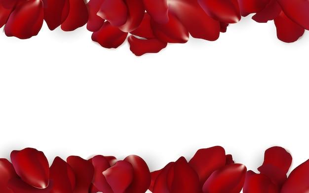 Confetes sazonais de pétalas de rosa vermelhas caindo, elementos de flor isolados no fundo branco. abstrato floral com pétala de rosas de beleza.