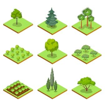 Conjunto 3d isométrico de árvores decorativas de parque público