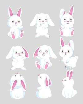Conjunto animal selvagem coelho fofo
