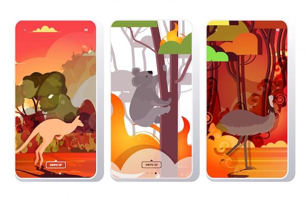 Conjunto avestruz canguru coala fugindo de incêndios florestais na austrália animais morrendo em incêndio florestal incêndio natural desastre conceito intensa laranja chamas telefone telas coleção aplicativo móvel