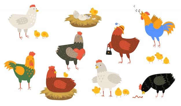 Conjunto bonito de galinhas e galos