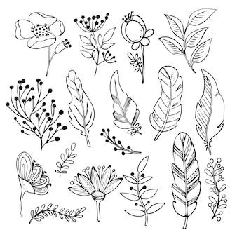 Conjunto botânico de flores e ramos de plantas e folhas.