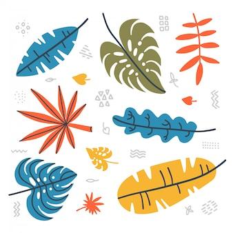 Conjunto botânico de folhas tropicais. coleção contemporânea de mão desenhada plantas da selva - folha de palmeira, folha de bananeira, hibisco. falt mão ilustrações desenhadas