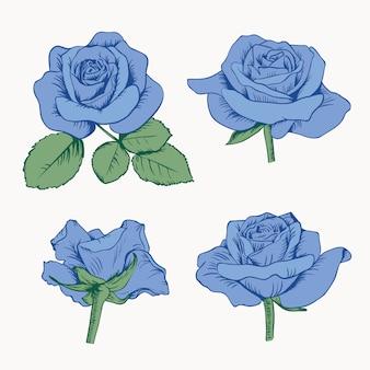 Conjunto coleção de rosas azuis