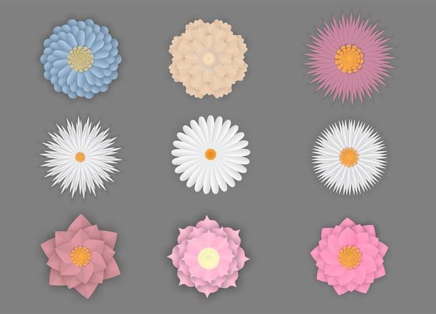 Conjunto colorido de flores na arte de papel isolado