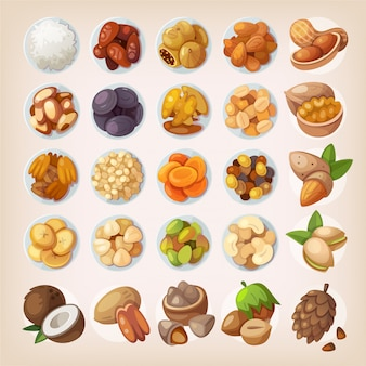 Conjunto colorido de frutas secas e castanhas. vista do topo. ilustrações