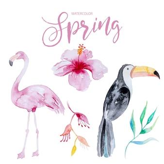 Conjunto colorido de pássaros e flores tropicais