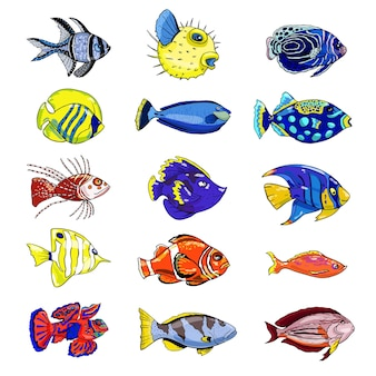 Conjunto colorido de peixes exóticos em um fundo branco. ilustração em vetor desenhada à mão.