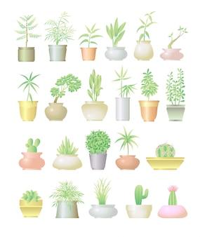 Conjunto colorido de planta e vaso