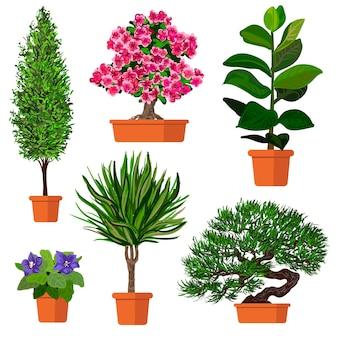 Conjunto colorido de vetor de ilustração de plantas em vaso.