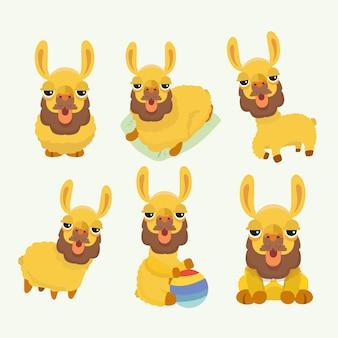 Conjunto com alpacas fofos.