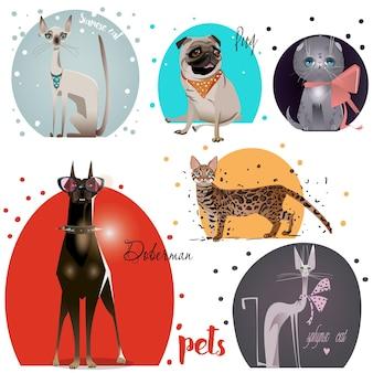 Conjunto com animais de estimação de desenhos animados - cães e gatos