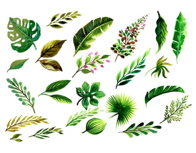 Conjunto com elementos florais e folhas de desenho em aquarela