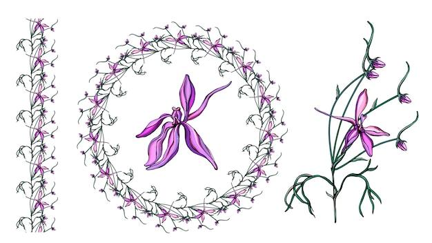 Conjunto com flores silvestres roxas delicadas.
