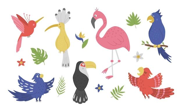 Conjunto com pássaros exóticos fofos