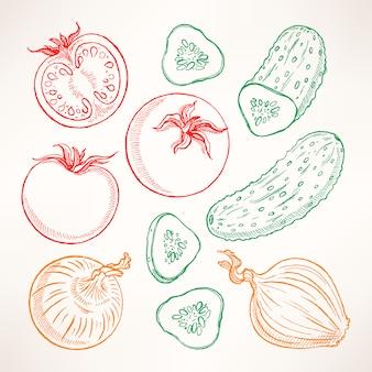 Conjunto com vegetais de esboço. tomates, pepinos, cebolas