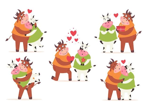 Conjunto cow bull casal amor