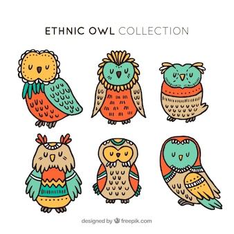 Conjunto criativo de corujas étnicas