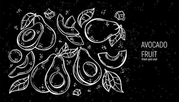 Conjunto de abacate de desenho de mão. para etiquetas, menus, design, pôsteres e impressão
